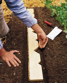 DIY: Planter's Yardstick--Press the flat edge into the earth to make a furrow. Then lay the board on its side, and use the notches to help you space the seeds and seedlings evenly.
