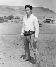 """""""Flaming Star""""  1960, Twentieth Century Fox  Partial cast list: Elvis Presley, Steve Forrest, Barbara Eden, Dolores Del Rio,  John McIntire, Rudolph Acosta."""