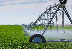 Califórnia, USA. Sistema de irrigação.