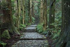 大門坂(熊野古道)Kumano Road | Wakayama, Japan