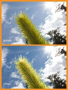 My 5 Favorite Lightroom Color Tricks 5 cool tricks for popping skies and correcting skin in Lightroom. From Digital Photography for cool tricks for popping skies and correcting skin in Lightroom. From Digital Photography for Moms.