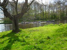 Waterscouts langs de Greuns t.o. Froske Polle mei 2015