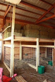 Birthing pens with hay storage above, homemade goat pens, barn customization, goat pen inspiration Goat Shelter, Sheep Shelter, Goat Pen, Goat House, Goat Care, Raising Goats, Raising Farm Animals, Farm Projects, Sheep Farm
