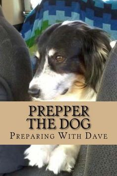 Free ebook on Amazon today....free doesn't usually last long so if you're interested download now and read later.  Prepper The Dog by Preparing with Dave,