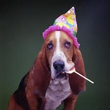is it his birthday or is he bored at someone elses party.His excitement is contagious!