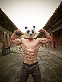 """Humour, disguise, and China: the """"Panda Boy"""" project by the American photographer West Phillips http://www.westphillips.com/#mi=2&pt=1&pi=10000&s=0&p=3&a=0&at=0"""