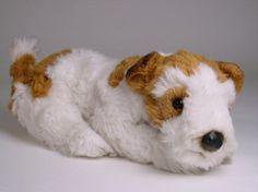 """""""Atlas"""" Wire Fox Terrier"""