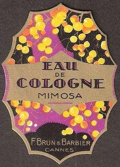 illustration publicitaire : étiquette, Art Déco, eau de cologne, parfumerie, mimosa, violet - jaune