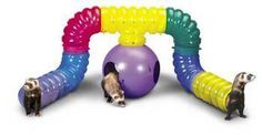 Build your ferret their own tunnel!
