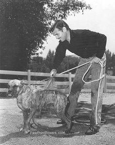 .Clarke Gable, washing a Boxer doggie...