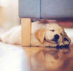 I like sleeping under here