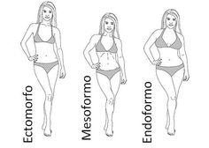 Adelgaza según el tipo de cuerpo   Adelgazar – Bajar de Peso