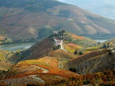 Quinta do Crasto: Douro Valley, Portugal Harrison Ford, Spain And Portugal, Portugal Travel, Rolling Stones, Douro Portugal, Lake Wanaka, Porto Rico, Douro Valley, Top Place