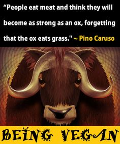 People eat meat and think they will become as strong as an ox, forgetting that the ox eats grass. - Pino Caruso