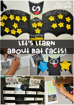 Have fun locating facts and distinguishing between fact and opinion with bats!  Bat anchor chart, bat craft, and fact locating!