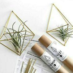 ➡ K A D O T I P ⬅ Of gewoon stiekem voor jezelf. Toppers zijn het deze #himmel van  @draadzaken  Fijne zaterdag!  #diy #airplant #airplants #geometrisch #mooiemuur #interieurstyling #decoration