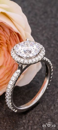 French Set Diamond Halo Engagement Ring. Green Lake Jewelry 110831