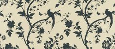Oriental Garden Natural/Charcoal Floral Wallpaper at Laura Ashley Laura Ashley Oriental Garden, Natural Charcoal, Hallway Inspiration, Tile Patterns, Colour Schemes, Living Room Decor, Living Rooms, Interior Styling, Home Furnishings