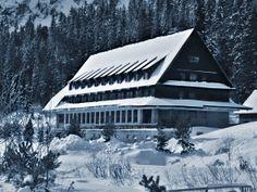frozen cottage #hightatras #slovakia #winter