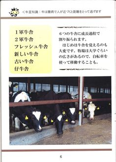 6ページ:牧場概要②