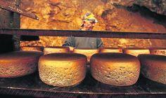 Piezas de queso Cabrales en la cueva durante su proceso de maduración. :: nel acebal