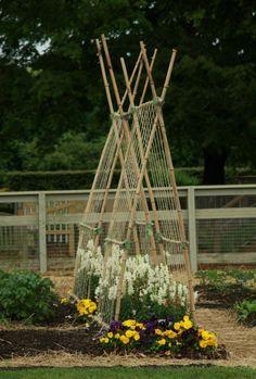 garden trellis...