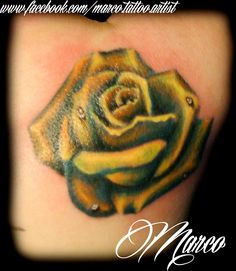 Tattoo, rosa, rose, tatuagens  www.facebook.com/marco.tattoo.artist