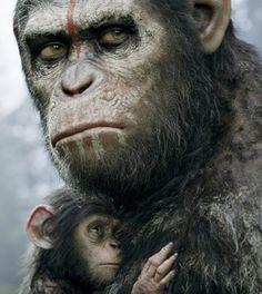 Apes of the Revolution - Il Pianeta delle Scimmie - http://www.lavika.it/2014/08/apes-of-the-revolution-pianeta-delle-scimmie/