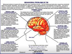 Behavioral problem associated with TBI: Identified by lobe and part of brain affected.