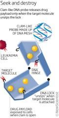 Clam-shaped nanorobot delivers drugs straight to relevant cells using DNA locks.