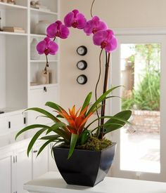 centerpiece, orchid potted - Google Search #orchidspotted #orchidscenterpiece