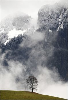 autumn meets winter - Sigriswil BE Switzerland
