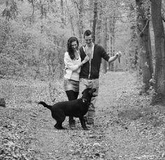 labrador in het bos