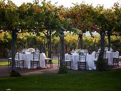 Concannon Vineyard Wedding Location Livermore Wedding Venue Tri Valley Wine Country Reception Venue 94550