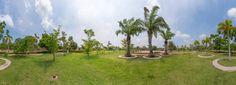 panorama of public park
