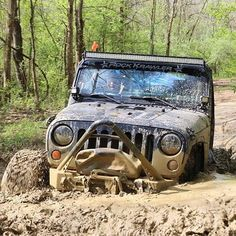 Jeep deep in the mud