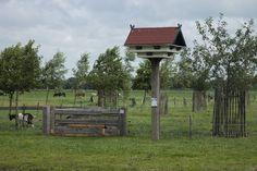 De zwaluwtil aan de achterzijde van de boerderij