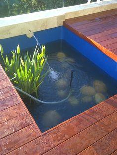 Garden Maintenance, Irrigation, Cape Town, Garden Landscaping, Pond, Garden Design, Aquarium, Fish, Landscape
