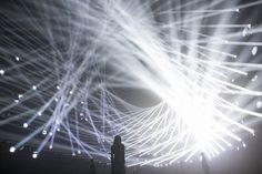 teamlab jungle interactive light installation japan designboom