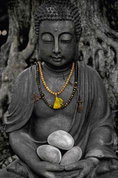 Buddha Stone Póster