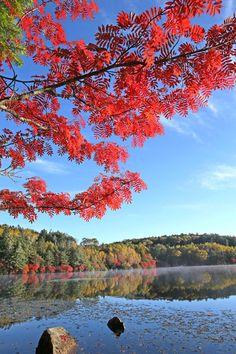 The Colors of Lake Shirakoma, Nagano, Japan...