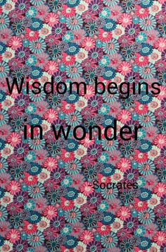 Wisdom begins in wonder. -Socrates