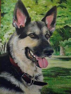 perro pastor (oleo sobre tela)