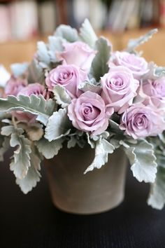 Dusty miller and purple roses