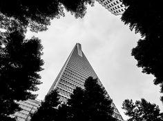 transamerica pyramid | BrandonYYC