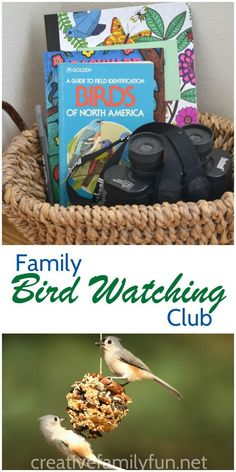Start a new hobby with your family. Bird watching is a fun, easy, and inexpensive way to spend quality time together.