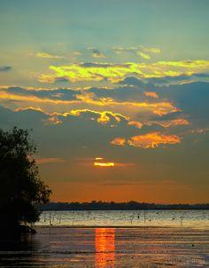Danube Delta - photo by Alex Dima