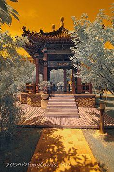 Xian Garden  | China photo