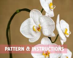 Crochet Flower Pattern  Crochet Orchid by HappyPattyCrochet