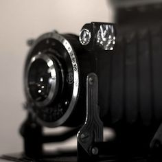 Don't Let Your Camera Collect Dust: 10 Inspiring Ideas For Photography